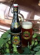 Logo Bier-hannes Export Dunkel
