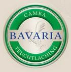 Logo Camba Nelson Weiße