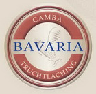 Logo Camba Brown Ale