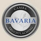 Logo Camba Pils