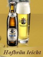 Logo Hb Traunstein Leicht