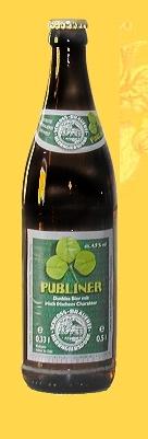 Logo Herrngiersdorfer Publiner