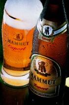 Logo Mammut Export