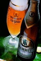 Logo Mammut Ur Pils