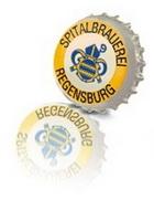Logo Regensburger Spital Dunkel