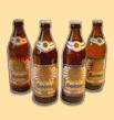 Logo Sonnenbier Zunft Drunk Dunkel