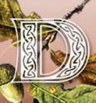 Logo Wäldches Druidenbräu